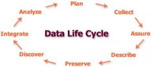 DM-cycle