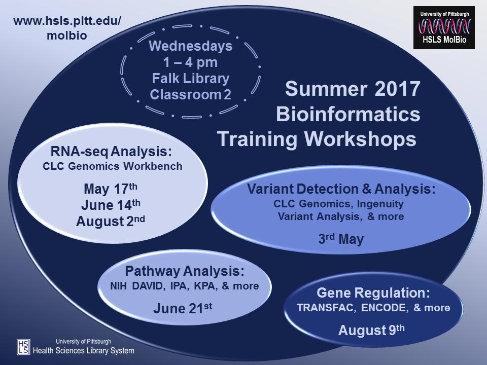 schedule-summer2017
