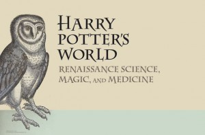 harry_exhibit