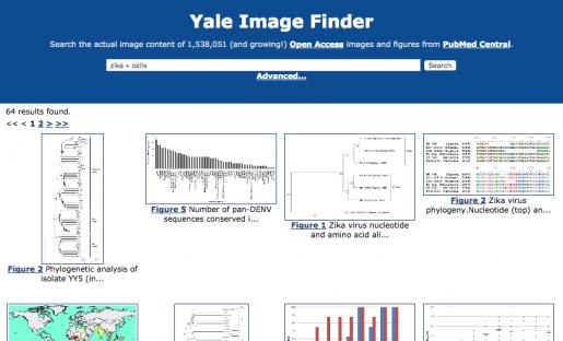 Yale Image Finder