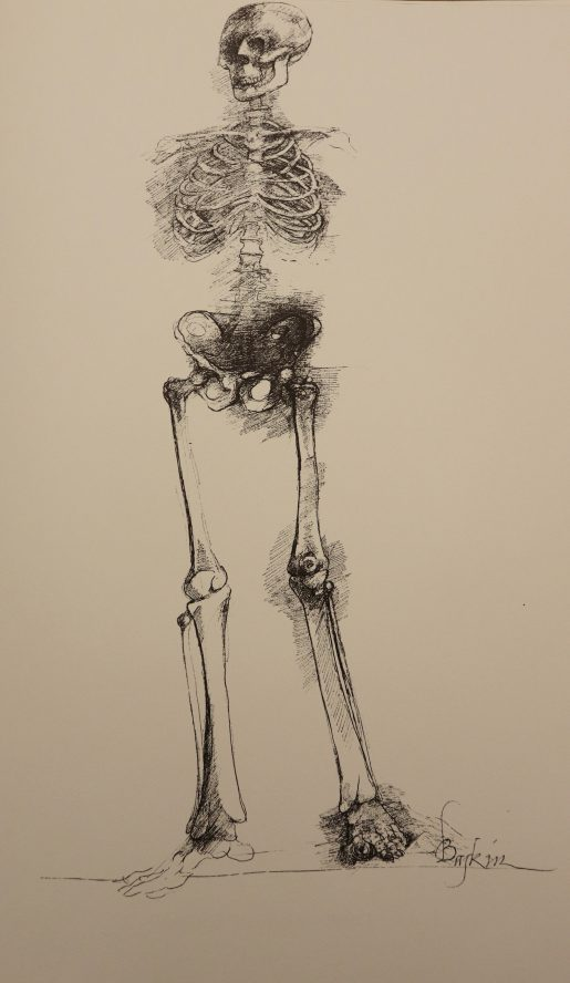 Image of a human skeleton from Leonard Baskin's Ars Anatomica: a medical fantasia