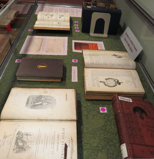Photograph of books in a display case